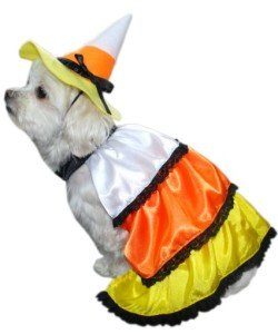 Candy Corn Dog Costume