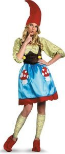 Disguise Women's Ms. Gnome Costume | adult women gnome costume | family group costumes