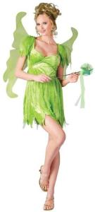Neverland Fairy Adult Costume| Tinkerbell Peter Pan family group costume