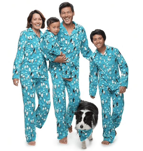 Matching Family Penguin Snowflake Holiday Pajamas