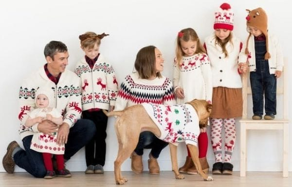 Dear Deer Collection Family Matching Sweaters